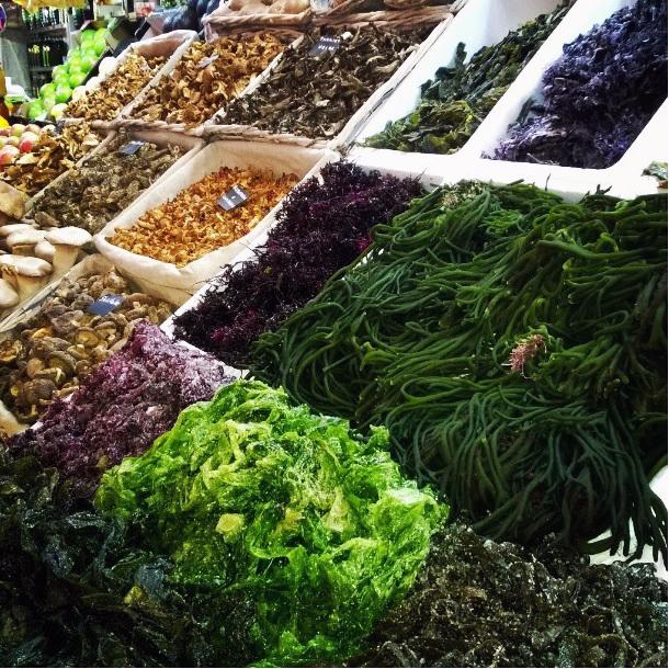 tipos de algas comestibles y sus propiedades